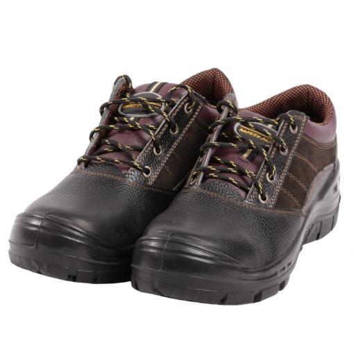 کفش ایمنی پانیرو