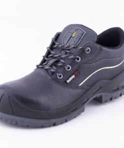 کفش ایمنی رایکا